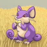 019: I Has a Corm Rattata