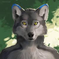 616851 by Rikkoshaye