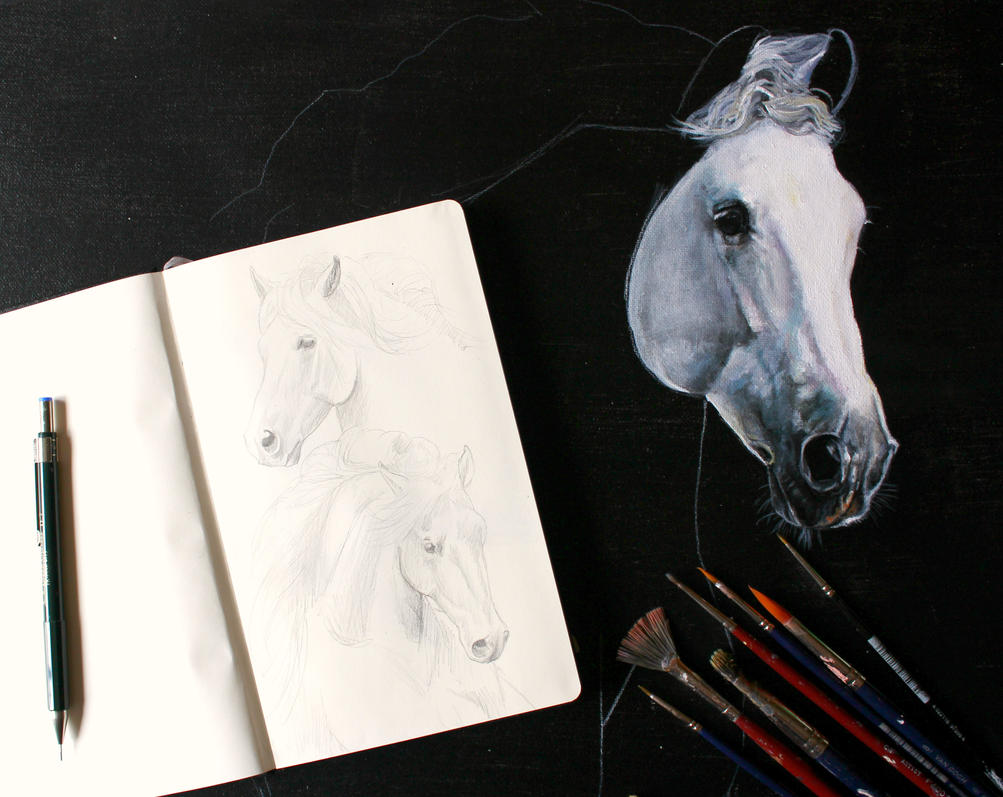 Untitled by luequineart