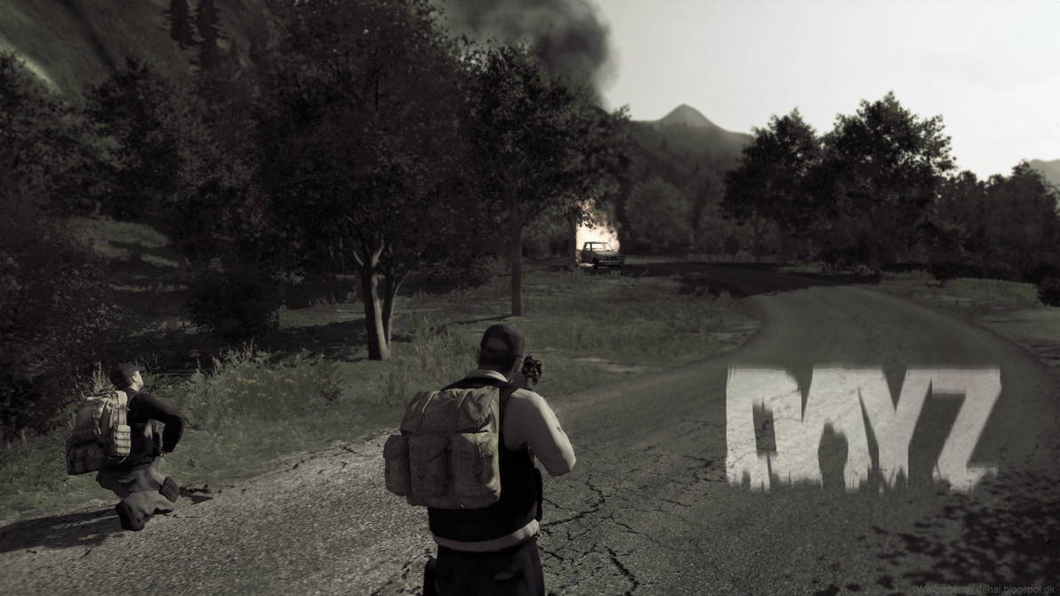 DayZ Wallpaper Panthera - Intense situation by Jehal on DeviantArt