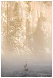 Firehole River by Nate-Zeman