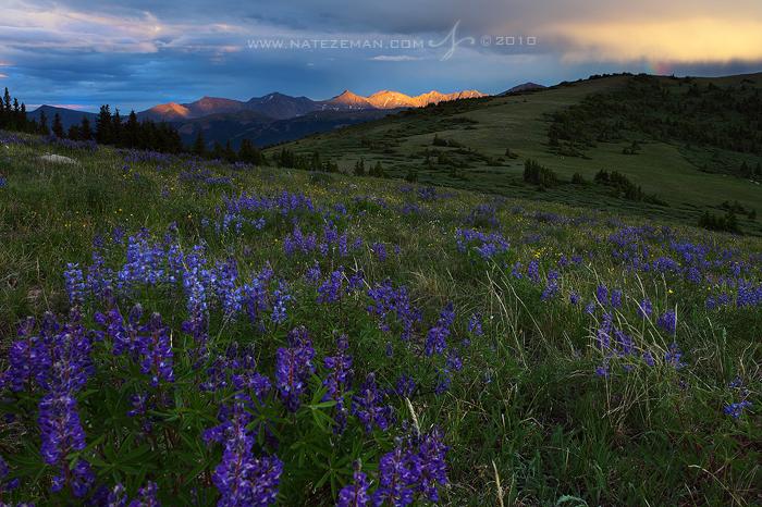 Summer Sunset by Nate-Zeman