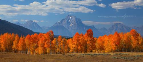 Peak of the Season by Nate-Zeman