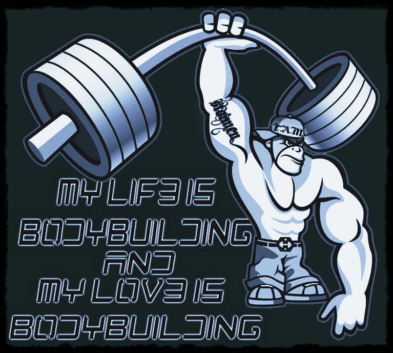 Bodybuilding by SHWZ