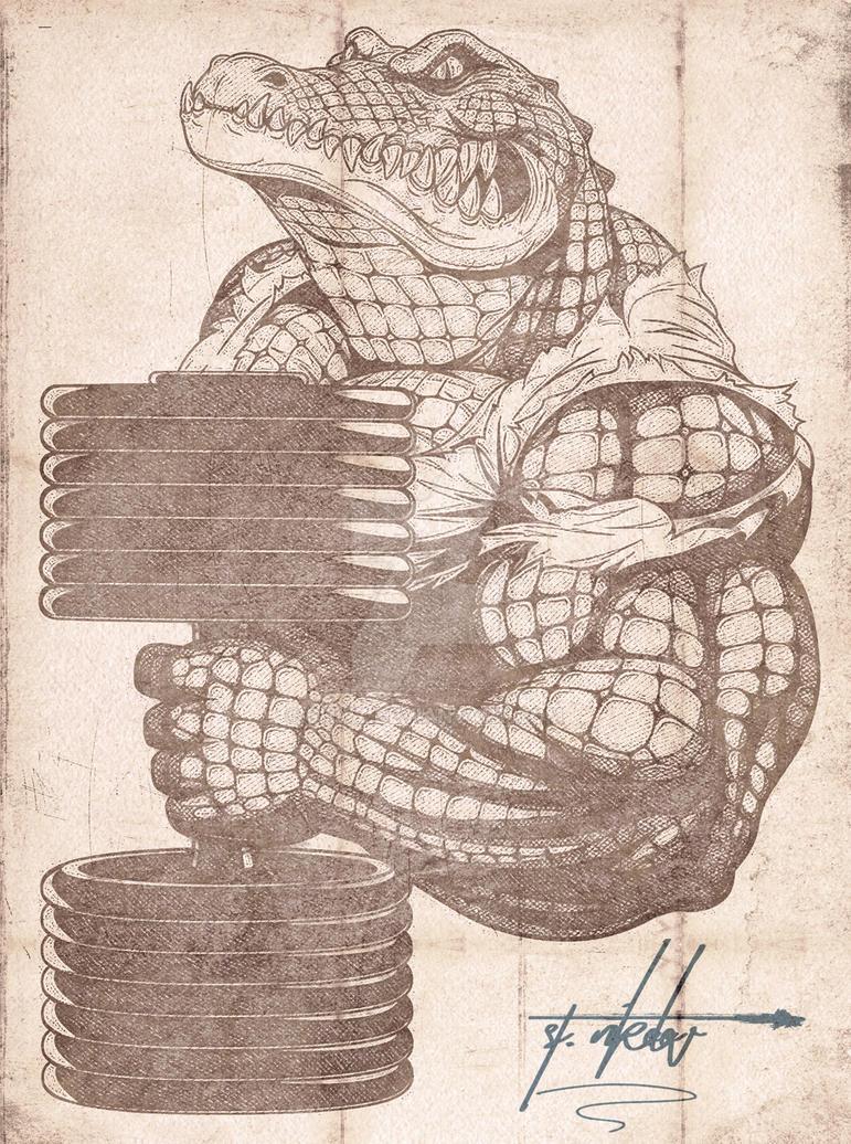Alligator by SHWZ