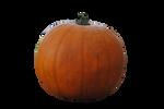 Pumpkin PRECUT PNG Stock