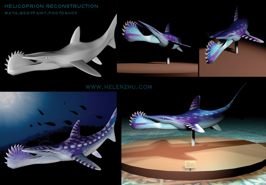 Helicoprion Reconstruction by Spiralfish