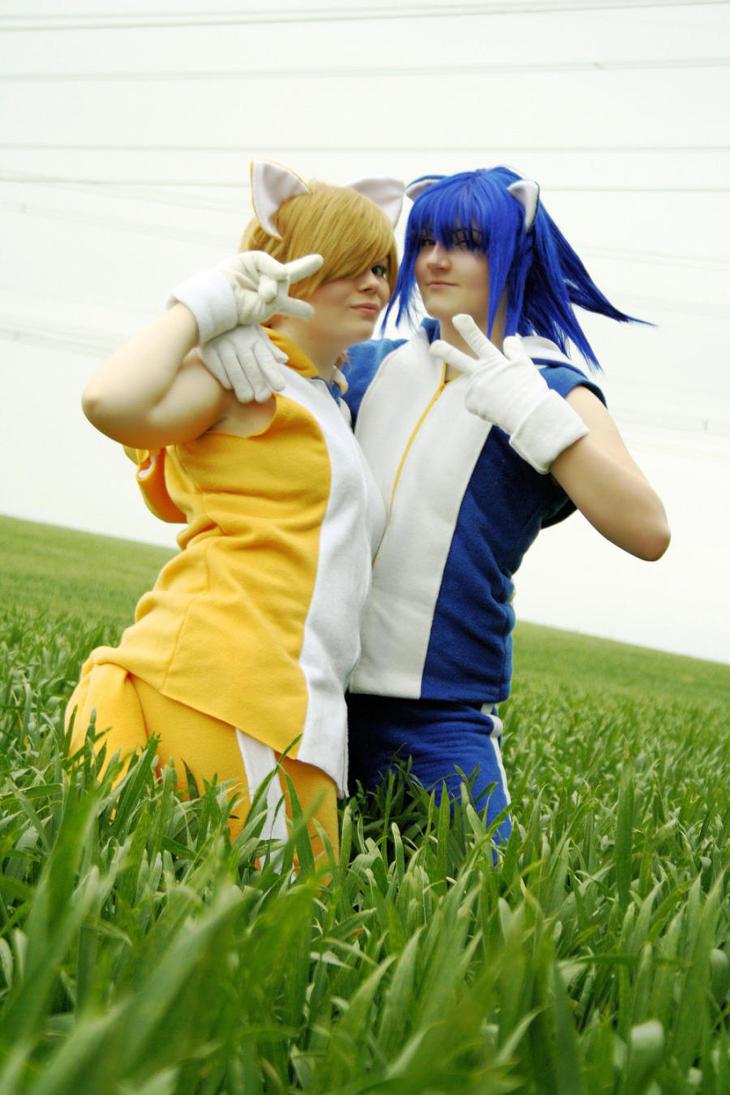 Sonic and Tails: best friends by AgitoAkitoWanijima