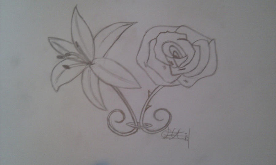 Simple Line Art Rose : Lily rose tattoo commisson by chazman on deviantart