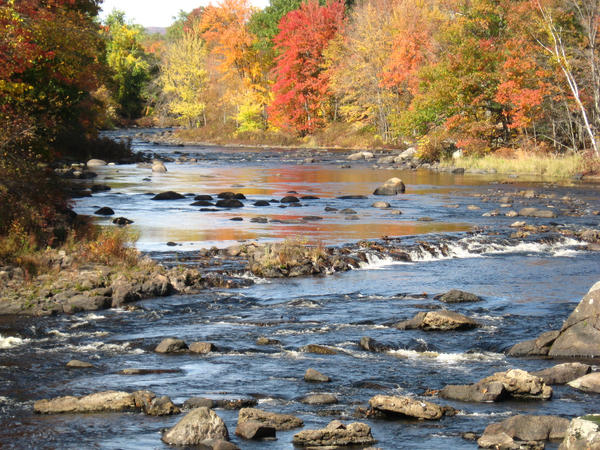 fall 08 on the Contoocook by crazygardener