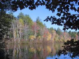 fall reflections 5 by crazygardener