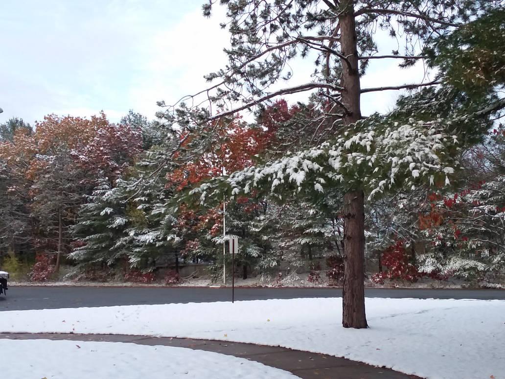 1st snowfall 11