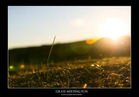 Grass meeting Sun by Chrypetex