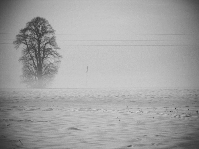 When winter descends. by LunaLemon
