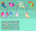 (BerryVerse) MLP NG FAMILY TREE: (Sky)PinkieDash