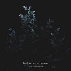 Tearless Lady of Sorrows - Song Cover