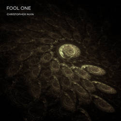 FOOL ONE / COVER