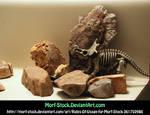 Dinorocks