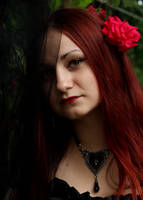 Red Rose by Aradenia