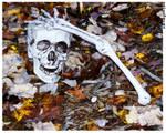 Halloween Over? by seiyalover