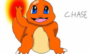 Chase The Charmander