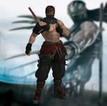Ryu Hayabusa Spirit of the Fighter