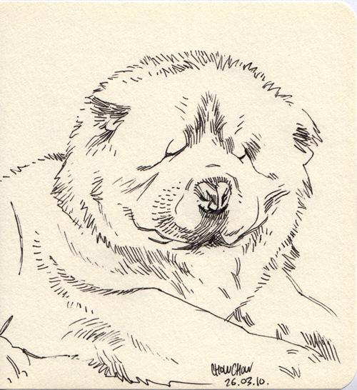 http://fc04.deviantart.net/fs71/f/2010/136/7/4/Sketchbook47_by_joslin.jpg