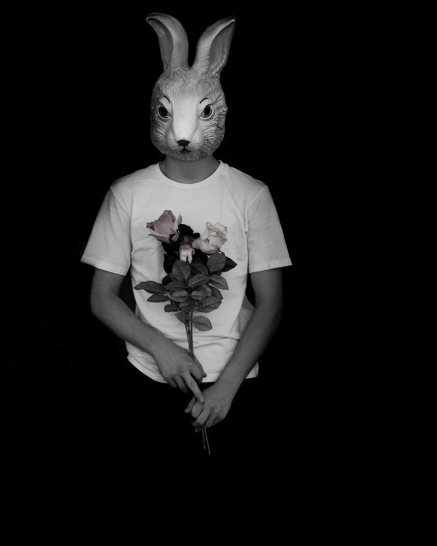 Rabbit in the Darkness by saaarahb
