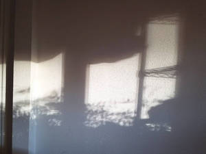 shadows on the wall