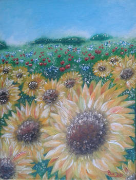Sunflowers (III_2016)