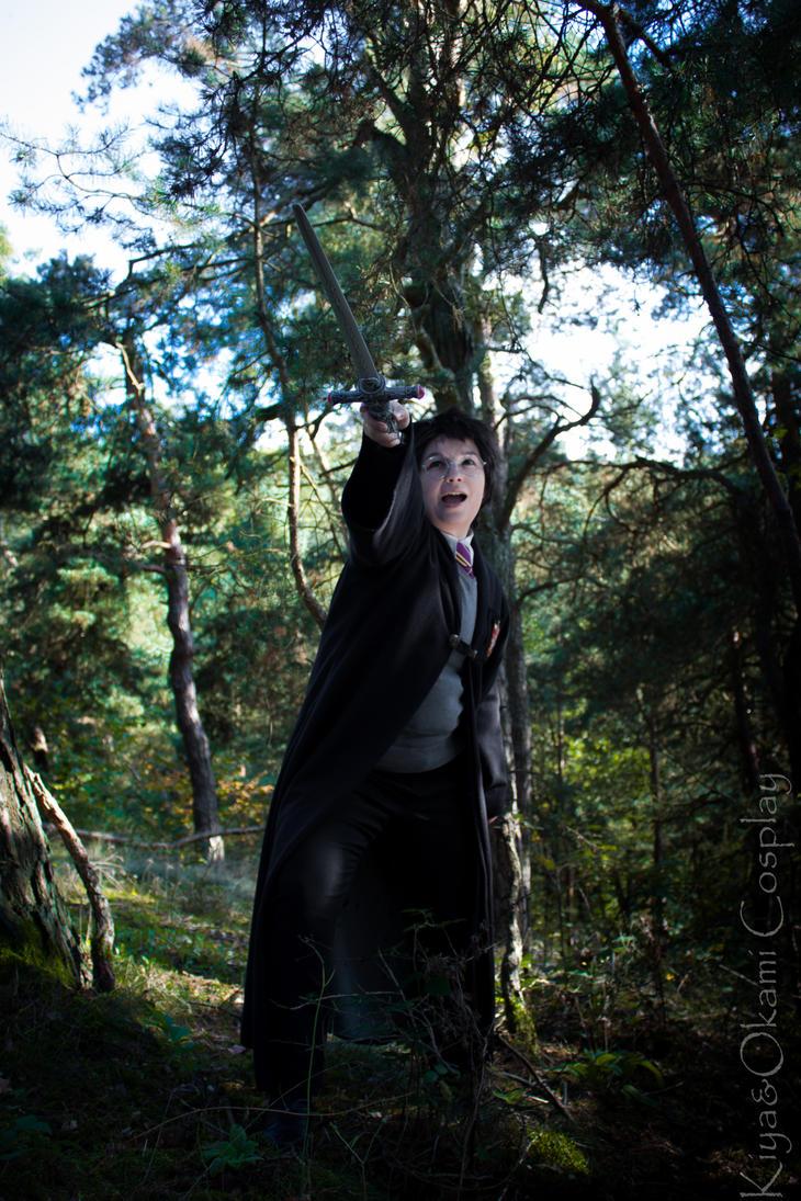 HP: Higher, my head up by Okami-kiba