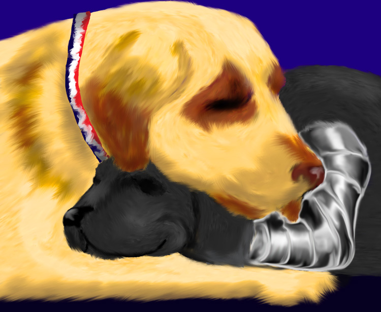 Dog Steve and Dog Bucky sleeping