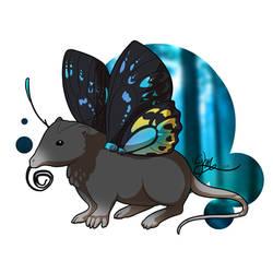 Shrewfly