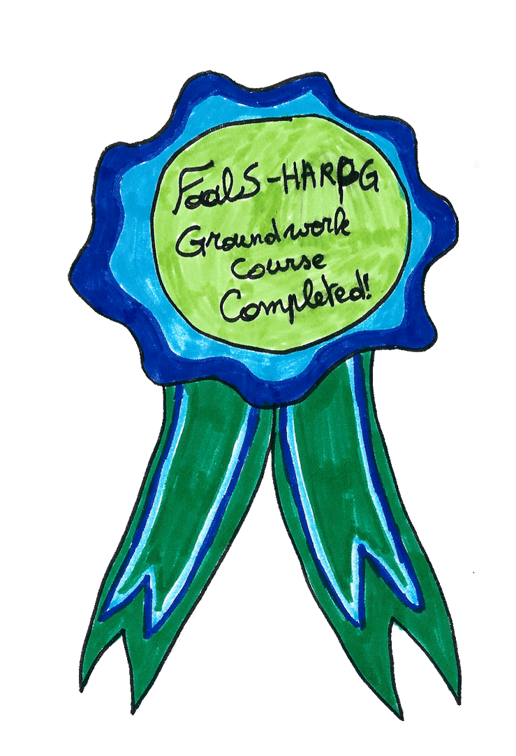 FoalS: Groundwork Course by Forget-Me-Not-Fields