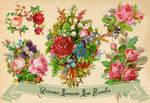Victorian Romantic Rose Bundles