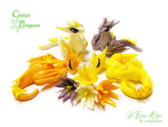 Crocus dragons by rosepeonie