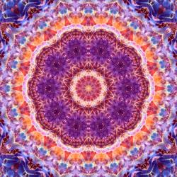 Cosmic Convergence Mandala