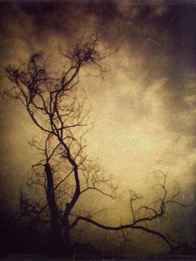 Abyss by Panyagua