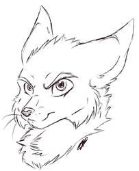 The Dark Fox