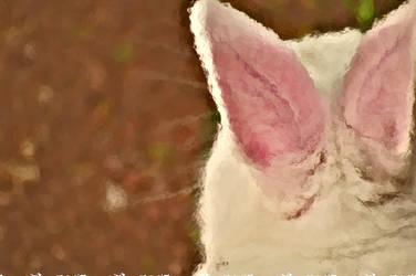 bunny ears by afdynasty27fury
