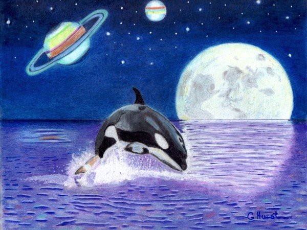 Midnight Orca Fantasy Finished by Bobcat79