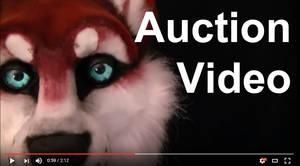 Auction Video!