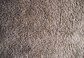 Plain Fabric Texture 11 by fudgegraphics