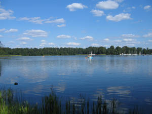 The Galves Lake