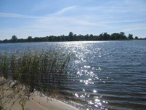 Neris on the shore of Rusne