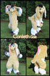 Conleth Goat