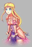 Zelda - Hyrule Warriors by Hichiyan