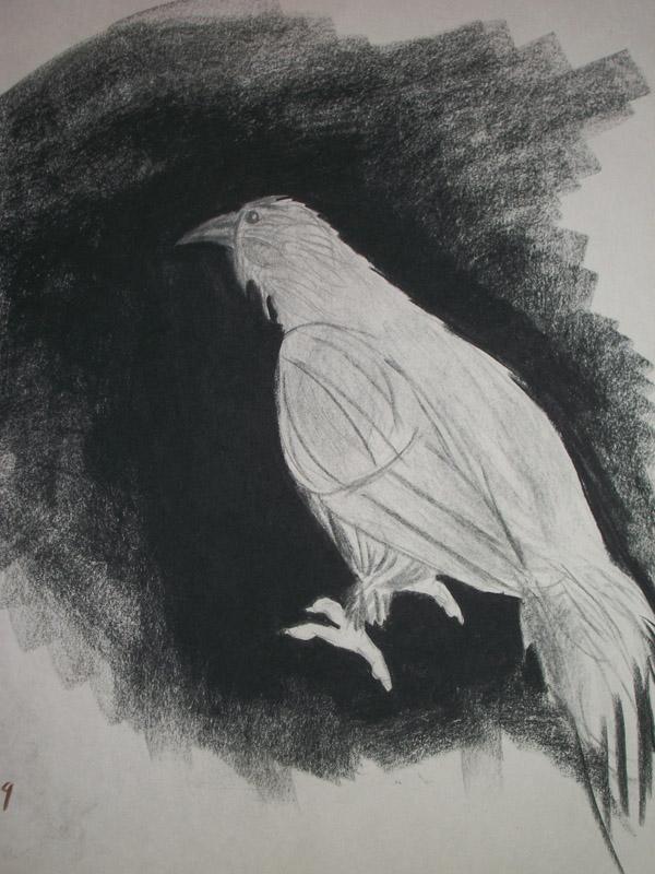 Charcoal Bird By HannahCanDraw On DeviantArt