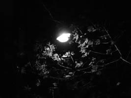 light  in  thr  dark by MrDoomy