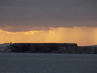 Sunset of the  birds by MrDoomy
